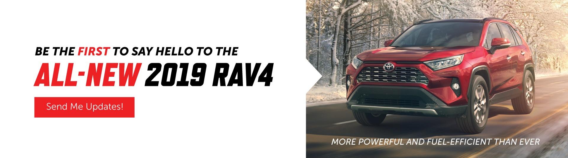 2019 RAV4 in Georgetown